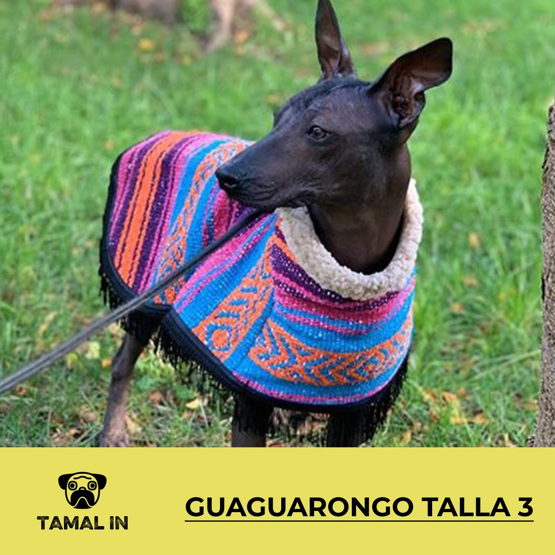 Guaguarongo con Borrega